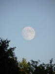 August 11, 2012 Moon over Roberts Cove